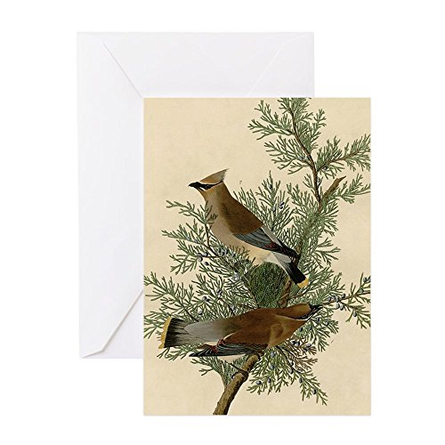 CafePress - Audubon Cedar Waxwing Bird Greeting Cards - Greeting Card (20-pack), Note Card with Blank Inside, Birthday Card Matte ()