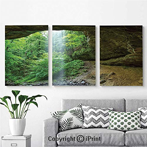 Modern Salon Theme Mural Canyon Michigan Caves Memorial Falls in The Forest Eco Foliage Picture Painting Canvas Wall Art for Home Decor 24x36inches 3pcs/Set, Army and Fern Green ()