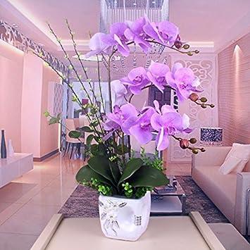 Gslovedc Topfpflanzen Orchideen Dekoration Kunstliche Blumen Bonsai