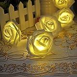 Xcellent Global Striscia Luminosa con 20 Luci LED Natalizie Bianche a Forma di Rosa Alimentate a Batteria per Alberi di Natale, Interni, Stanze, Feste I-LD078