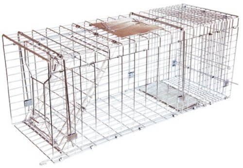 "JT Eaton 495N Answer Single Door Live Animal Cage Trap for Extra Large Size Pests, 42"" x 15"" x 17"""