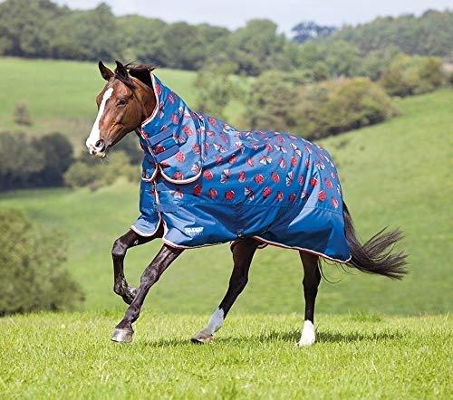 <乗馬乗馬用品馬具>馬着 Ladybug 中綿入ネック付き 600デニール 145cm(やや大きめ)  B07LFFL7PJ