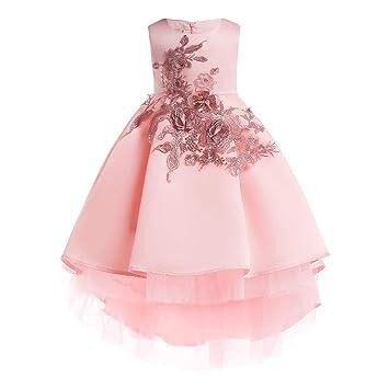 DZOUP Vestido niña Fiesta de 3 a 10 años Princesa Cumpleaños ...