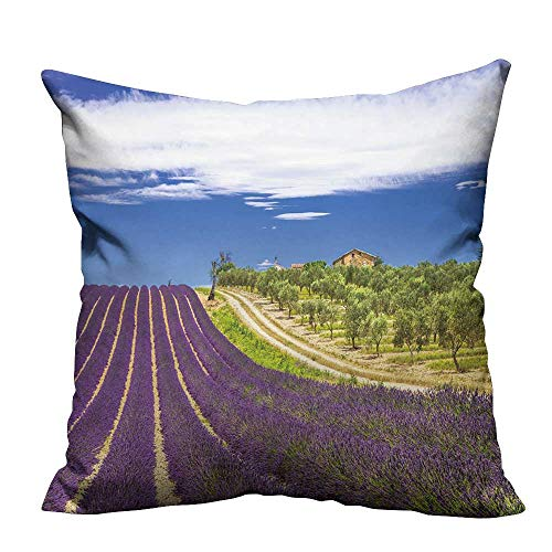YouXianHome Decorative Throw Pillow Case Lavande in Provence,France Ideal Decoration(Double-Sided Printing) 31.5x31.5 inch ()