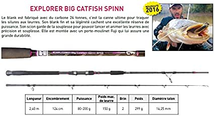 CINNETIC - Explorer Big Catfish Spinn, Color 80-200 gr: Amazon.es ...