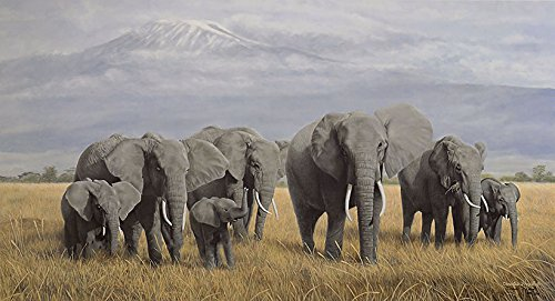 TREASURES OF AFRICA by Charles Frace' Signed & Numbered Limited Edition Paper Lithograph by Charles Frace'