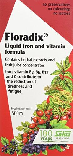 Floradix Formula Iron - Salus Floradix Liquid Iron Formula 500Ml