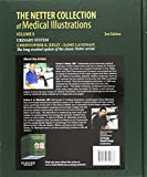 The Netter Collection of Medical Illustrations