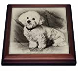 3dRose trv_4625_1 Bichon Frise Trivet with Tile, 8 by 8''