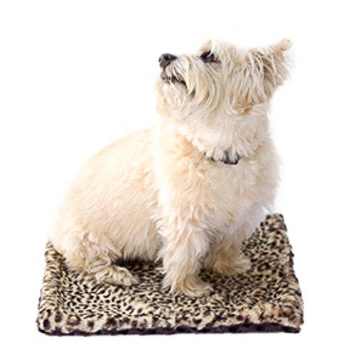 The Dog Squad 36 by 58-Inch Minkie Binkie Blanket, Medium, Cheetah