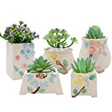 bookshelf decorating ideas XiaZ Succulent Pots Set of 5, Ceramic Planter for Herbs, Flower, Pearls Plant, Mini Yellow Base Container with Hole, Perfect Gift Idea