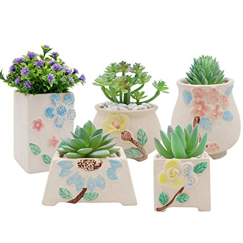 XiaZ Succulent Pots Set of 5, Ceramic Planter for Herbs, Flower, Pearls Plant, Mini Yellow Base Container with Hole, Perfect Gift Idea