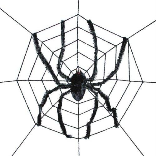 WMU Spider Web With Spider ()