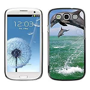 - Butterfly Design - - Hard Plastic Protective Aluminum Back Case Skin Cover FOR Samsung Galaxy Mega 2 G7509 Queen Pattern