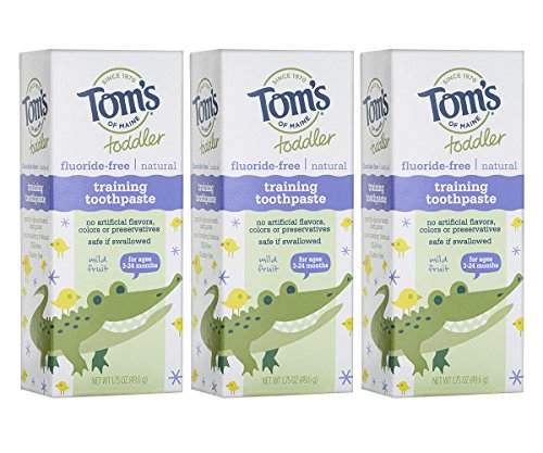 Tom's of Maine Toddlers Fluoride-Free Natural Toothpaste in Gel, Mild Fruit, 1.75 Ounce, 3 Count (Toothpaste In Babies)