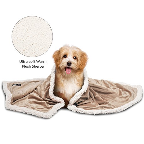 Pawsse Sherpa Puppy Blanket for Small Dogs Kitten, Warm Flannel Plush Pet Bed Blanket Reversible, 45