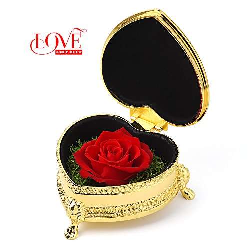 Valentine's Day gift, the best choice for a wife, a girlfriend, and a mother (Red&golden Heart-shaped)