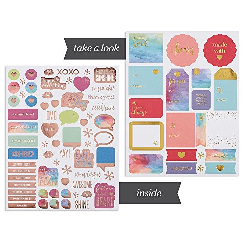 Erin Condren Designer Sticker Book - Classic Edition 3 (10 Pages of Stickers)