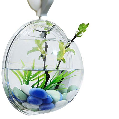 ROVATE Wall Hanging Aquarium, Arylic 6 Inchs Wall Décor Fish Bowls with Fake Plants and Rock Decoration, Size-mirror by ROVATE
