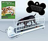 GoPet Petrun Indoor Exercise Treadmill for Dogs Up to 175 Pounds (Model #: PR-725) with FREE Custom Bone Shaped Dog Tag and E-Book