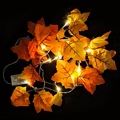Warm White Fall Garland Decorations Light,Fall Colored Artificial Maple Leaves for Weddings, Events and - Would Like What Glasses Look You With See