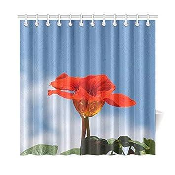 Amazon.com: WIEDLKL Home Decor Bath Curtain Nasturtium Cress ...