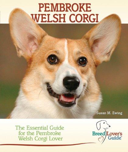 Pembroke Welsh Corgi (Breed Lover's - Pembroke Gardens