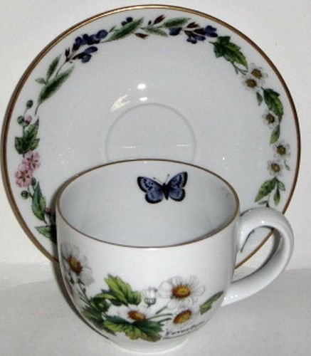 Royal Worcester Herbs Gold Trim Cup & Saucer Wild ()