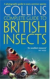Unique British Birds A Photographic Guide To Every Common Species  With Handsome British Insects A Photographic Guide To Every Common Species Collins  Complete Guide With Captivating In The Night Garden Edible Cake Figures Also Stewarts Garden Centre In Addition Forbury Gardens Reading And Cheap Giant Garden Games As Well As Getting Rid Of Rats In The Garden Additionally Garden Centres Near Belfast From Amazoncouk With   Handsome British Birds A Photographic Guide To Every Common Species  With Captivating British Insects A Photographic Guide To Every Common Species Collins  Complete Guide And Unique In The Night Garden Edible Cake Figures Also Stewarts Garden Centre In Addition Forbury Gardens Reading From Amazoncouk