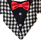 Ace Formal Dog Bandana with Red Bow Tie (Medium)