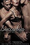 pack erotica - Succubus in Seven Days (Succubus Series Book 1)