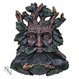 Feeder of the Forest Green Man Bird Bath
