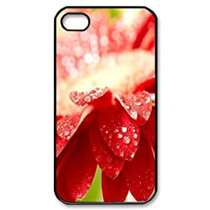 IPhone 4/4s Cases Amazing Red Flower, - [Black] Dustin