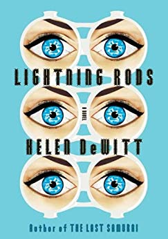 Lightning Rods by [DeWitt, Helen]
