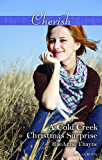 A Cold Creek Christmas Surprise (The Cowboys of Cold Creek Book 13)