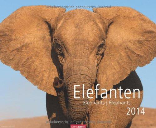 Elefanten 2014