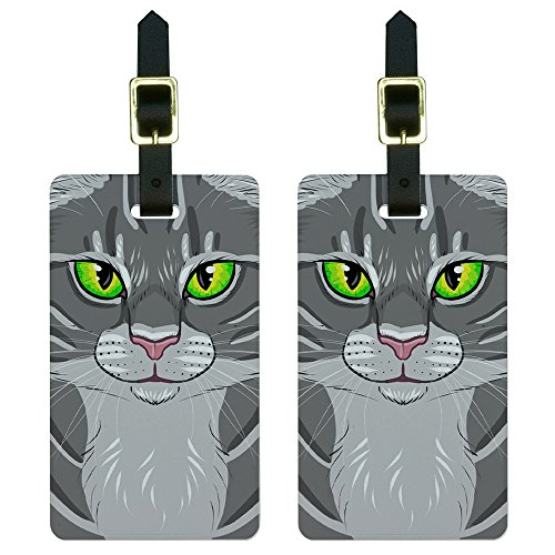 Gray Tabby Cat Face - Pet Kitty Luggage Tags Suitcase Carry-On ID Set of 2