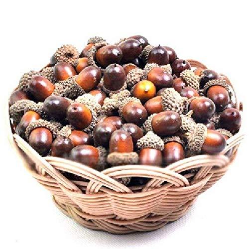 Home Holic 50/pcs Glands Artificiel Plantes en int/érieur Faux Fruit Props Craft DIY pour d/écorations de f/ête dautomne D/écor /écran Mariage