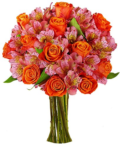 Benchmark Bouquets Radiant Roses and Alstroemeria, No Vase