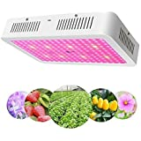 LED Grow Light 2000W - Apelila New Version Full Spectrum Led Growing Lamp for Hydroponic Indoor Plants Veg and Flower…