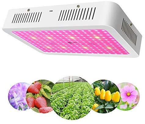 LED Grow Light 2000W - Apelila New Version Full Spectrum Led Growing Lamp for Hydroponic Indoor Plants Veg and Flower (240 LEDs)