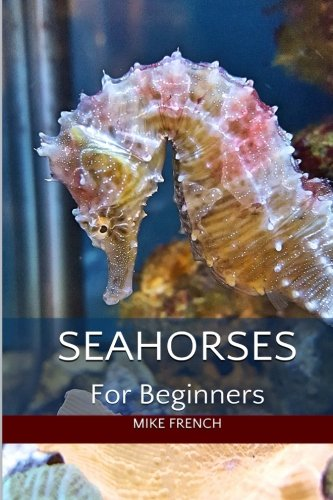 Seahorses For Beginners