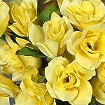 balsacircle-168-yellow-velvet-open-bloom-roses-24-bushes-artificial-flowers-wedding-party-centerpieces-arrangements-bouquets-supplies