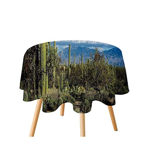 TecBillion Desert Polyester Round Tablecloth,Wide View of The Tucson Countryside with Cacti Rural Wild Landscape Arizona Phoenix for Home Restaurant,39.3