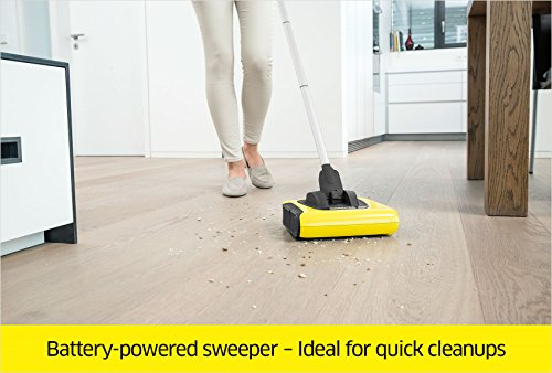 Buy manual carpet sweeper