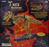 ": T-Rex Skeleton 45"" Dinosaur Assembly Set"