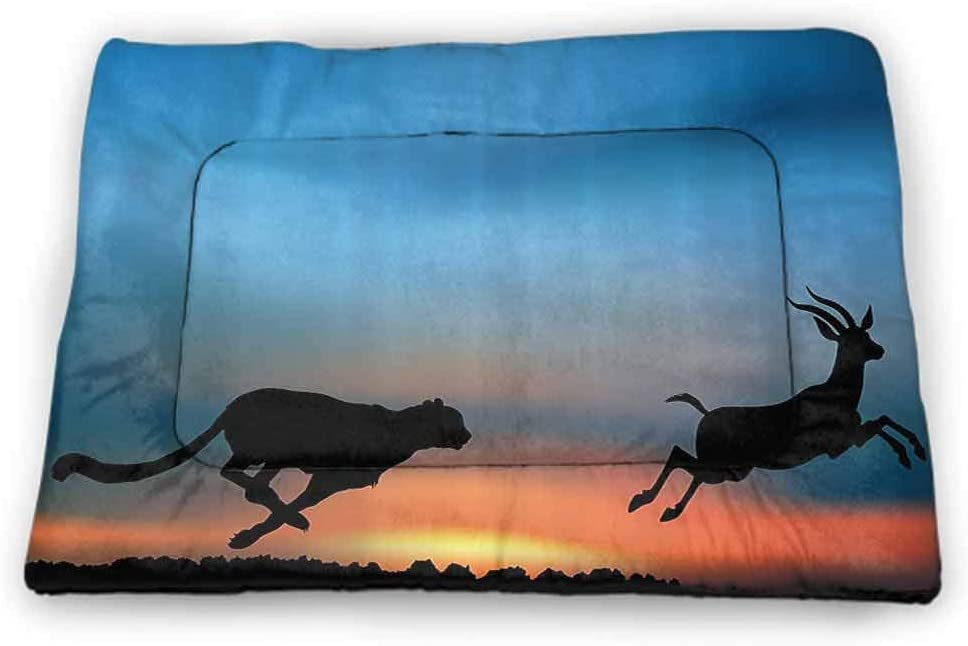 carmaxs Medium Pet Mat Bed Safari for Food and Water for Wood Floors Cheetah Hunting an Antelope View of Wild Nature Travel Picture 31 x 21 inch Sky Blue Salmon Black