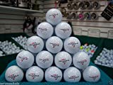 48 Pinnacle Gold White 5A Golf Balls