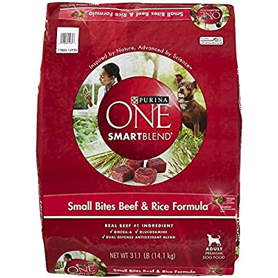 Purina ONE Adult Small Bites Beef & Rice Formula Dry Dog Food