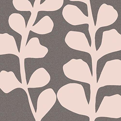 Maidenhair Shell Pink Denise Duplock Foliage Nature Botanical Abstract Canvas (Choose (Maidenhair Shell)